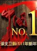湖北卫视2011元旦晚会