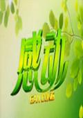 感动黑龙江卫视 2013