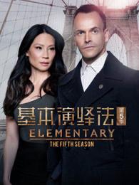 基本演绎法第5季(欧美剧)