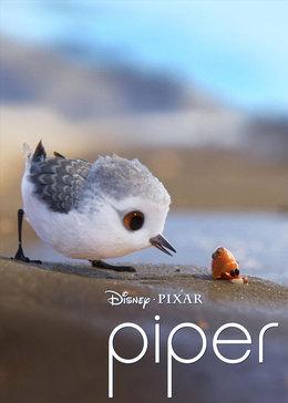 迪士尼皮克斯新作《Piper》