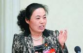 代表风采——刘宏:期待中国变成制造强国