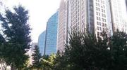 北京限房价竞地价试点地块:购买后5年不得出售