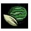 西瓜种子.png