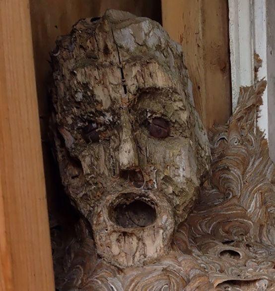 """男子在乡下小屋发现奇怪的\""""人脸\"""",走近一看,让人哭笑不得"""