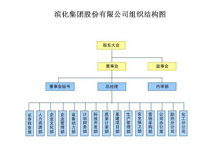 公司董事会结构图