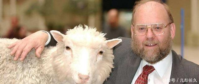 20年前就有克隆羊,为何一直都不克隆人?直到克隆羊死后才揭晓