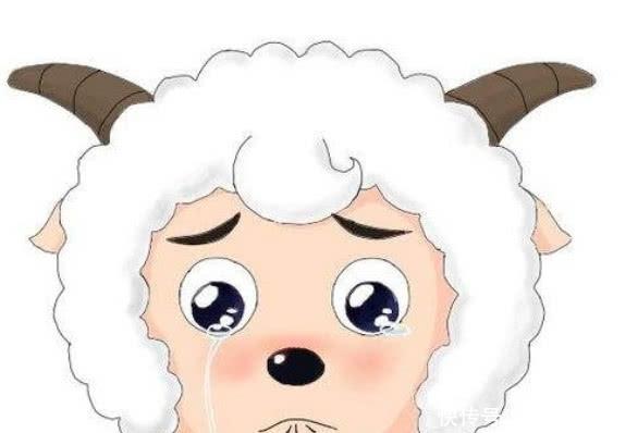 喜羊羊的父母为什么要离他而去,看到原因,网友:错怪你们了