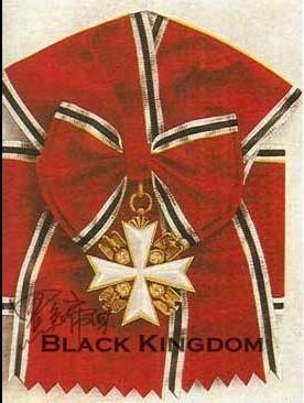 中间为白色珐琅十字,十字臂之间是金质向左纳粹鹰徽,尺寸90mm,背面别