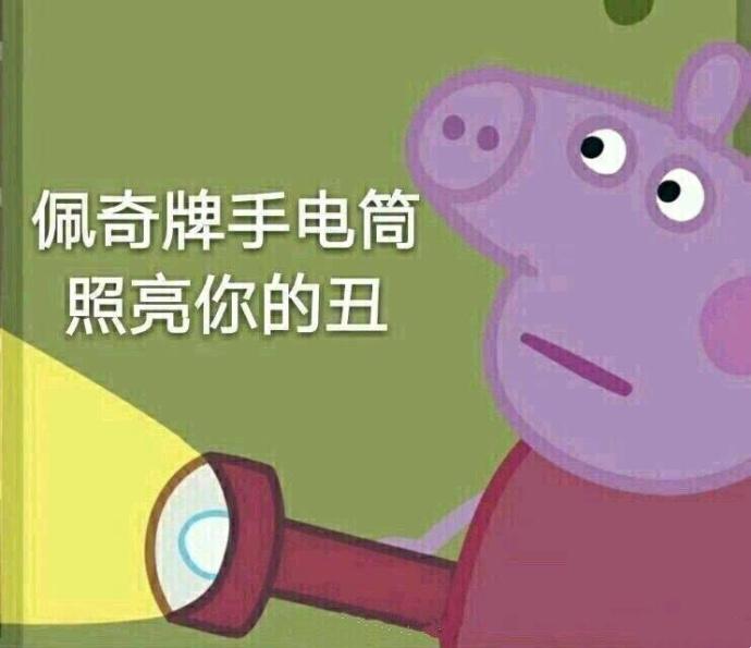 小猪佩奇手电筒照亮你的...