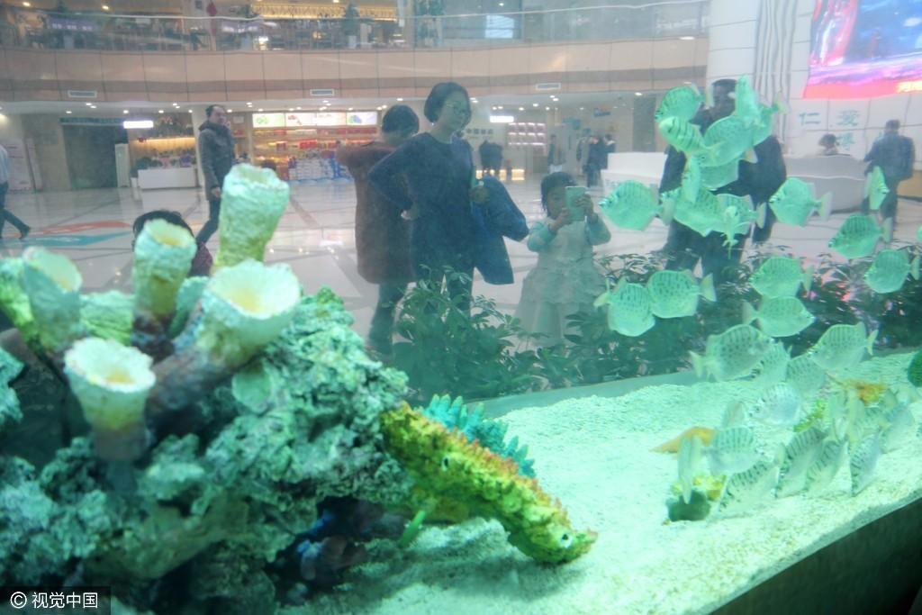 【转】北京时间      郑州一医院花数万元建巨型鱼缸 供病人免费欣赏 - 妙康居士 - 妙康居士~晴樵雪读的博客