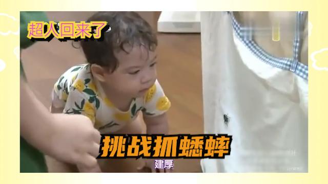 超人回来了:宝宝盯着蟋蟀伸手就抓,姐姐却不敢碰..