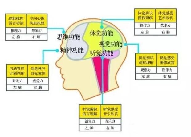 记忆力训练的方法