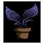 蕨类盆栽.png