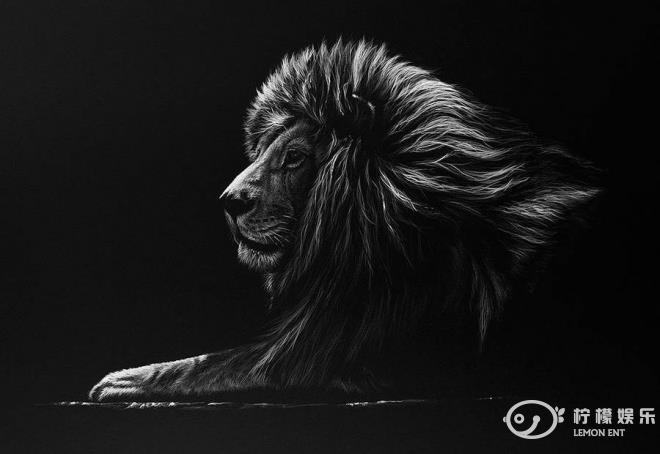 动物黑白照(1)