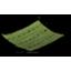 晾干的海藻.png