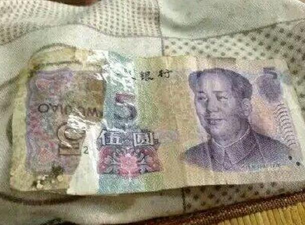 今天收到一张五元钱,我哭了