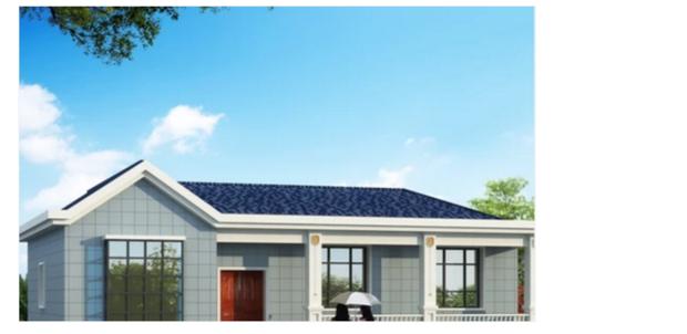 房屋一层平房设计图-大全设计农村图外观设计箱链轮图片