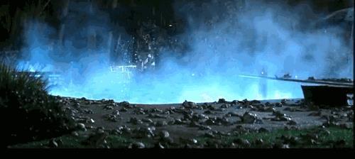 天上真的会下动物雨吗? - fdycq - 费家村----老费的三角梅花园