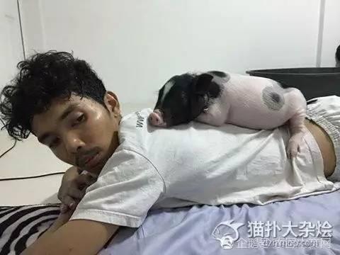 2017年05月05日 - 凤姐 - 凤姐博客