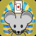 埃及大鼠扑克: