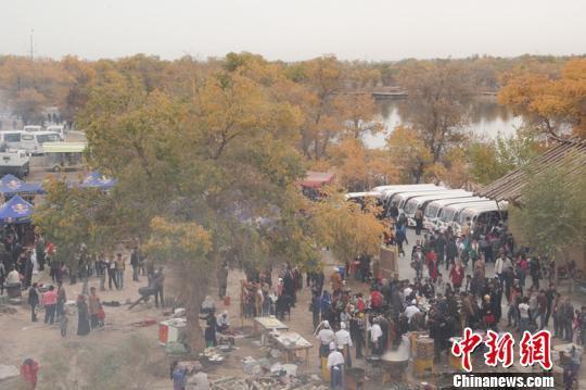 21日,记者在国家4a景区巴楚红海景区看到,胡杨黄叶如染,胡杨,水泊