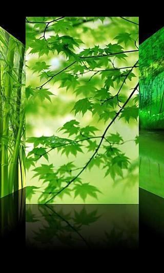 iPhone绿色桌面主题截图6