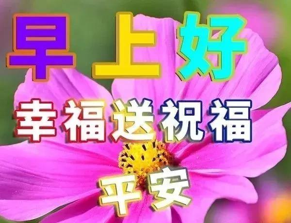 微信早上好祝福语a短信短信,可爱早安表情v短信爸!!!最美动画包图片