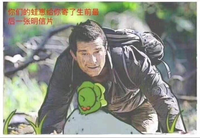 别人的青蛙和你的青蛙区别表情包 这就是你的青蛙为啥不回家的