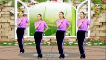 广场舞《一年有那三百六十五个天》动感舞步 青春活力