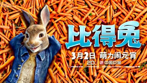 《比得兔》定档预告 人兔大战再升级