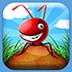 口袋蚂蚁: