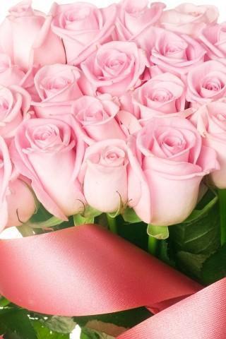 郁金香和玫瑰壁纸_360手机助手