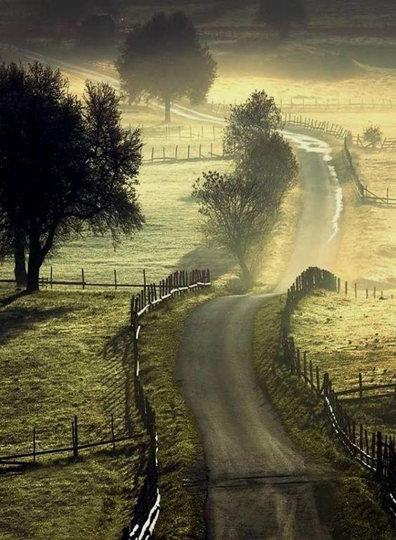 最美的风光就在脚下,摄影师镜头下美极了的道路。