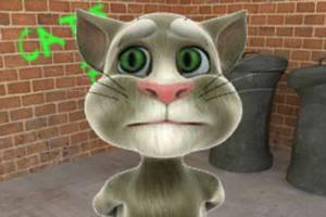 会说话的汤姆猫动画版,会说话的汤姆猫动画版