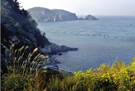 里岛位于辽宁省大连市长海县大长山岛南3.7公里处.