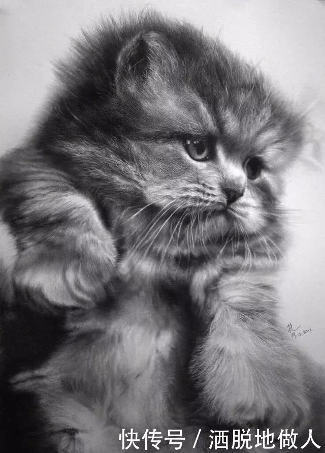 精微素描高清图片素材黑白_彩铅精微素描高清图片
