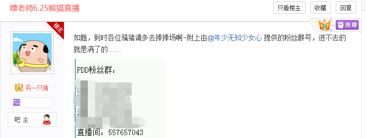 PDD熊猫TV首播时间确定