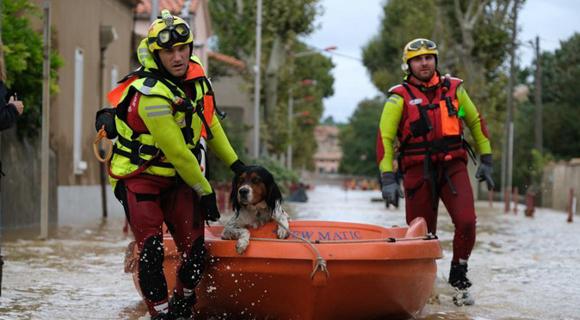 法国南部暴雨引发洪灾 消防员划船救助狗狗超暖心