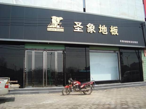 中国木地板十大品牌排名一览   地板是家居装修中重要的一部分,木地板也越来越受到欢迎,下面综合了市场和消费者综合评价的中国木地板十大品牌,希望能给您选择木地板做个参考。   中国木地板十大品牌之圣象  地板行业领军龙头,业界领域品质标兵,是我国大型木地板企业,连续13年同类产品销量第一,榜首地位经久无可撼摇。规模阵势强大,拥有中国最大的木业产业链,产品涵盖面广,品类齐全,设备先进,国际化程度高,产能丰富,还能根据客户需求生产个性化定制产品。圣象以其业内多年的领先铸就一线品牌形象,价格贵也是显著特点,装修