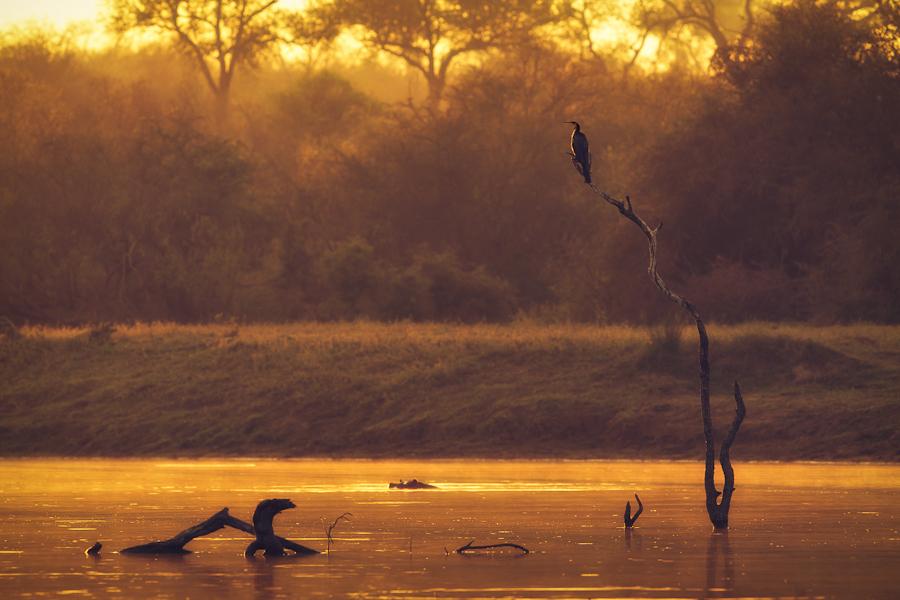 非洲唯美风景图片