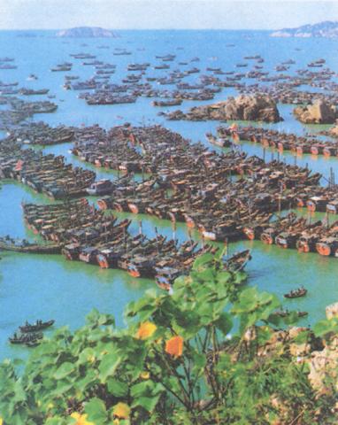 2006年,浙江省舟山海洋生态环境监测站对浙江省近岸海域暨舟山渔场
