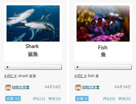 动物卡片单词 小学英语单词动物图片 小学英语动物单词-英语单词卡 图片