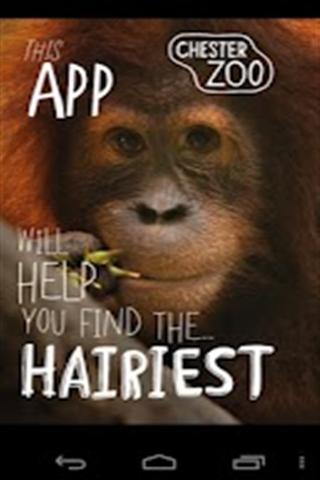 切斯特动物园_360手机助手