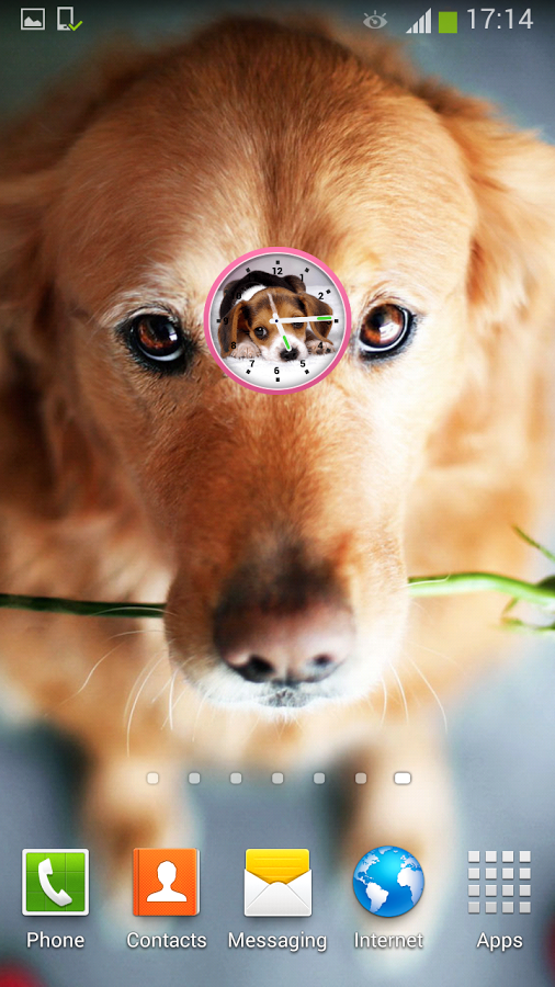 如果你喜欢狗和猫,和其他小动物,你会爱上这个可爱的狗时钟肯定的!