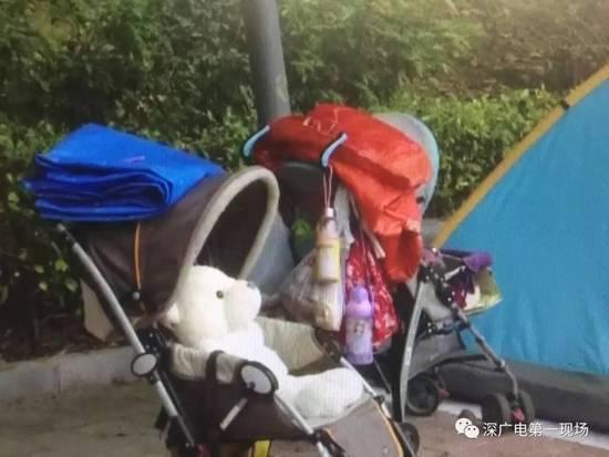 深圳夫妻一硕士一学士 却带3岁孩子流浪街头 - 流泪的江豚 - 流泪的江豚