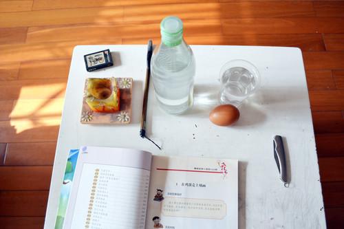 科学小实验会吃鸡蛋的瓶子