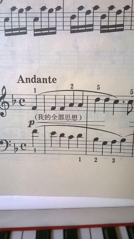 钢琴谱 高音 低音同一个音 怎么弹?就像下图中的第一个音re?