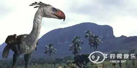 """曾称霸南美大陆的""""恐鹤"""",是一种不会飞的大型肉食性鸟类"""