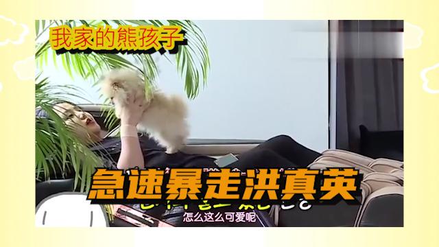 我家的熊孩子:洪真英还是怕姐姐的:我现在就过来.